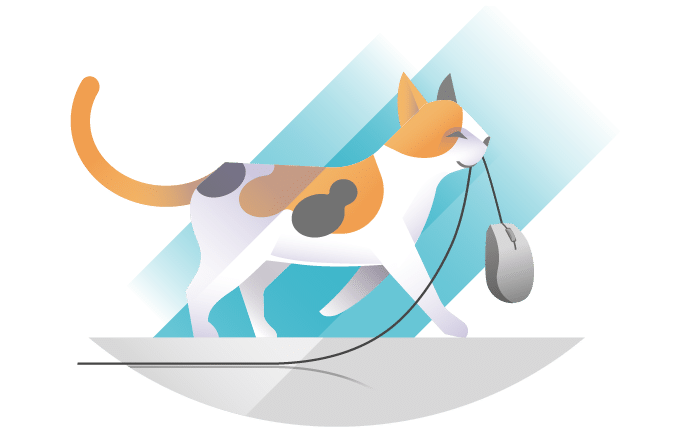 A cat dragging a computer mouse in its mouth