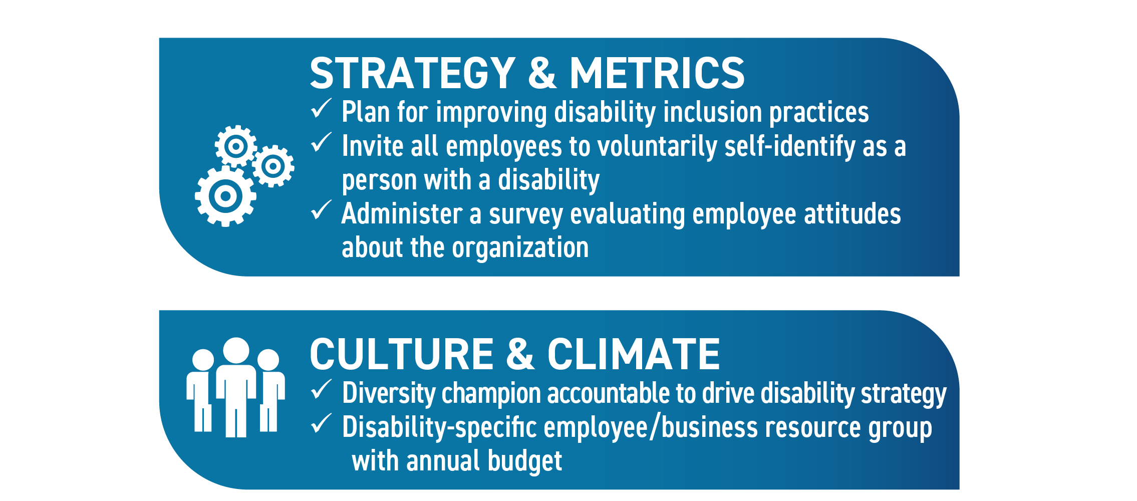 Strategy & Metrics: Plan for improving disability inclusion practices; Invite all employees to voluntarily self-identify as a person with a disability; Administer a survey evaluating employee attitudes about the organization. Culture & Climate: Diversity champion accountable to drive disability strategy; Disability-specific employee/business resource group with annual budget.