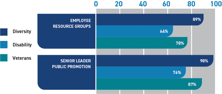 Graph showing percentage of companies using Employee Resource Groups: Diversity, 89%; Disability, 64%; Veterans, 78%. Graph showing percentage of companies that have senior leaders who publicly support: Diversity, 98%; Disability, 76%; Veterans, 87%.