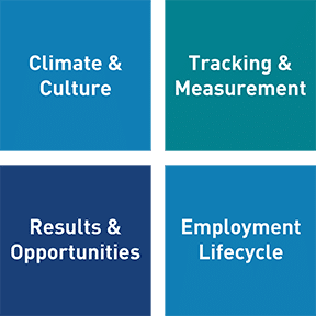 NOD finds that four areas must be addressed to build a robust Disability Employment capability: Climate and culture, Tracking and measurement, Results and opportunities and Employment lifecycle.